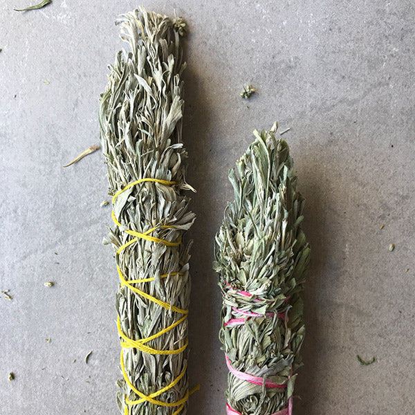 WILD BLUE SAGE  SMUDGE STICK - SMALL / LARGE - the_raw_store