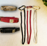 Dog Collar and Leashes Set