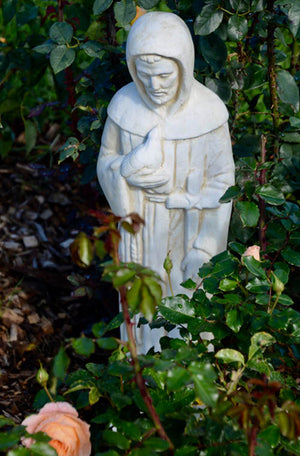 Faraway Garden St Francis of Assisi is one of our guardian statues as he is the patron saint of animals and natural environment, therefore a perfect addition to any garden setting. He is pictured below in Sepia.