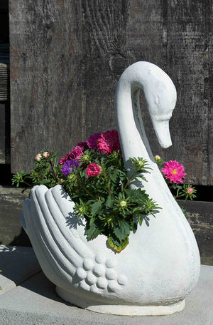 PRESENT-A-SWAN PLANTER... the perfect gift is just a click away