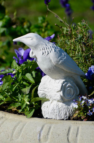 Celebrate one of NZ's magnificent native bird characters, the Tui with a handcrafted statue from Faraway Garden.  The much-loved, boisterous bird of forest and town with its distinctive white throat tuft (poi), ranging vocals and whirring flight.