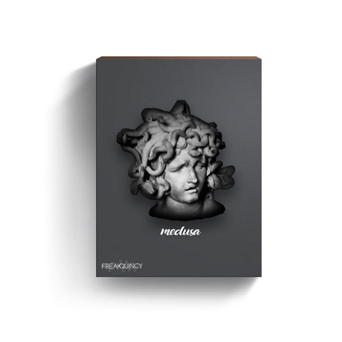 Medusa - Sample Loops & Midi Kit