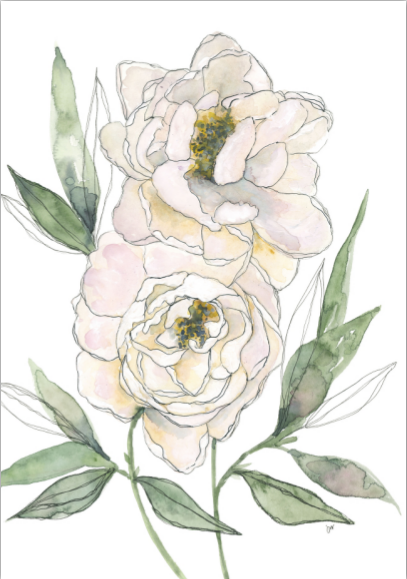 Card - White Peonies
