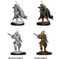 D&D Nolzurs Marvelous Miniatures Male Elf Rogue