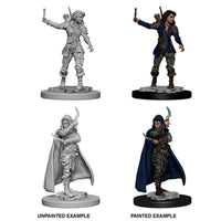 Pathfinder Deep Cuts Unpainted Miniatures Human Female Rogue