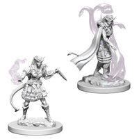 Dungeons & Dragons - Nolzurs Marvelous Unpainted Minis: Tiefling Female Sorcerer