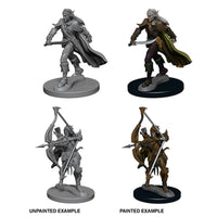 Pathfinder Deep Cuts Unpainted Miniatures Elf Male Fighter