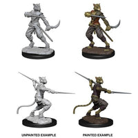 D&D Nolzurs Marvelous Miniatures Male Tabaxi Rogue
