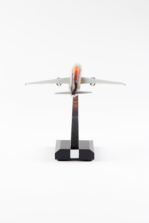 AMARE Model Airplane