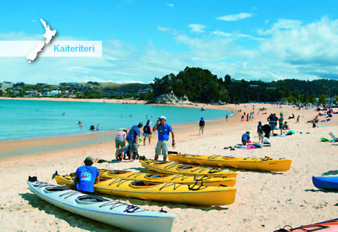 NM539 - Kaiteriteri, Nelson - Small Postcard