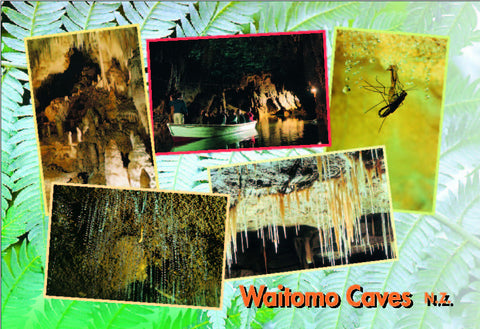 WC9344 - Waitomo Caves Multi - Small Postcard