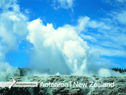 RT7195 - Whaka Geyser - Large Postcard