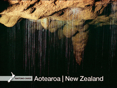 WC7119 - Glow-Worm Threads, Waitomo Caves - Large Postcard