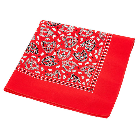 S&M BMX Bikes - Red Bandana / Face Mask