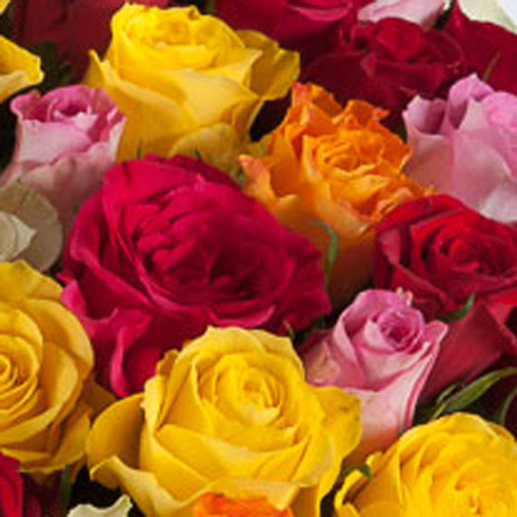 Cheap mothers day 50 roses flower bouquets next day delivery mothers day 50 roses izmirmasajfo