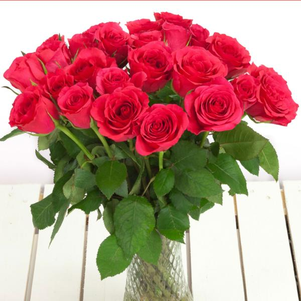 Cheap cerise roses flower bouquets next day delivery valueflora cerise roses izmirmasajfo