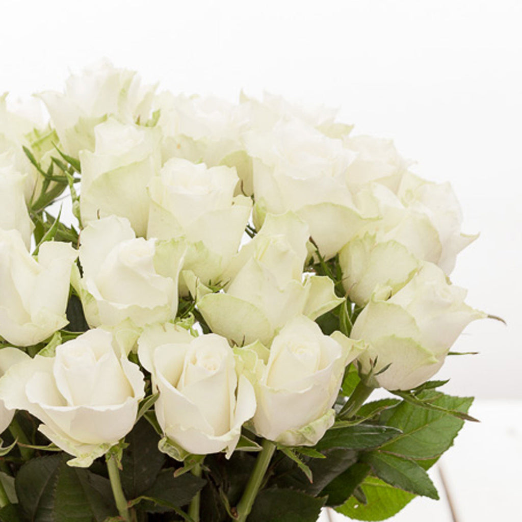 Cheap white roses flower bouquets next day delivery valueflora white roses mightylinksfo