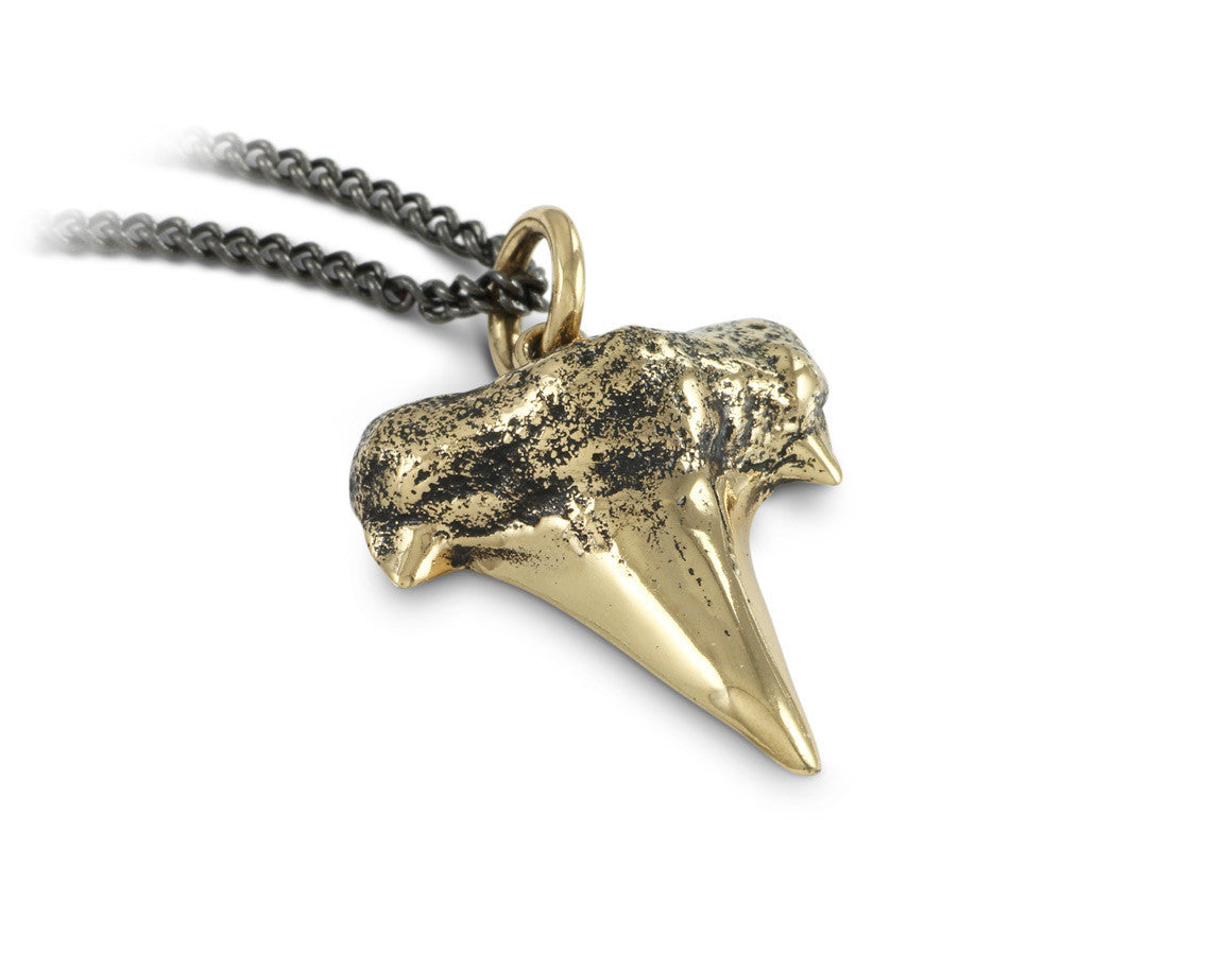lyons shark pendant baby tooth porter products