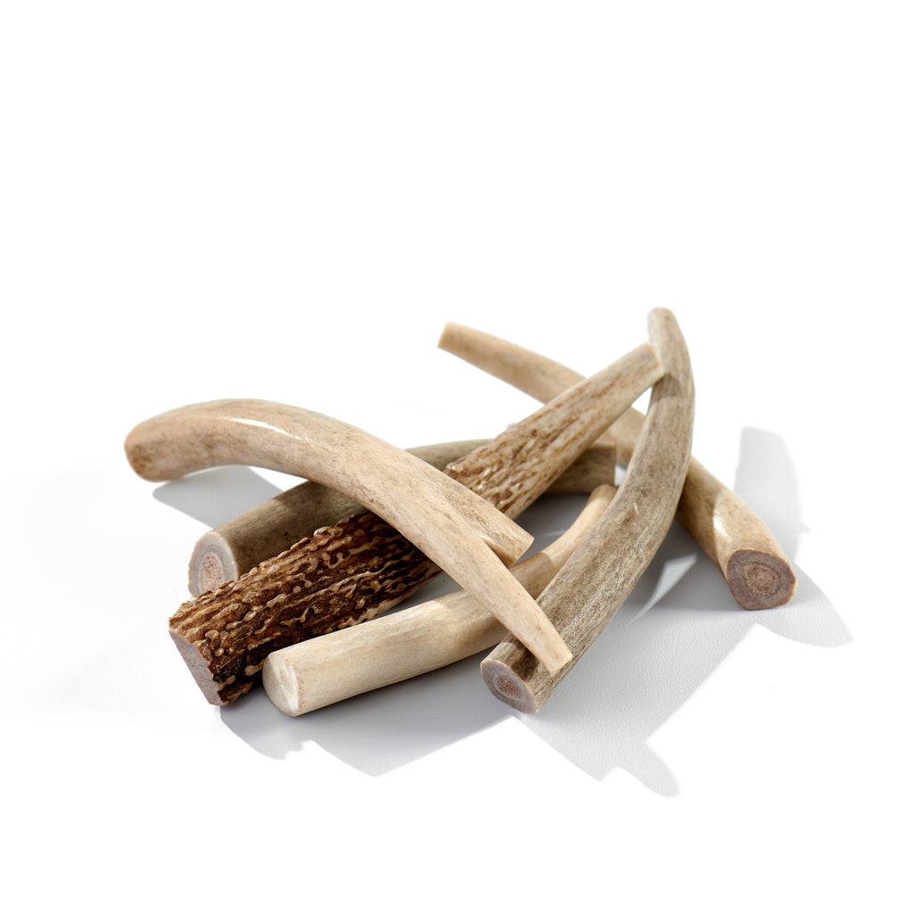 Deer Antler Medium, 6 Pack