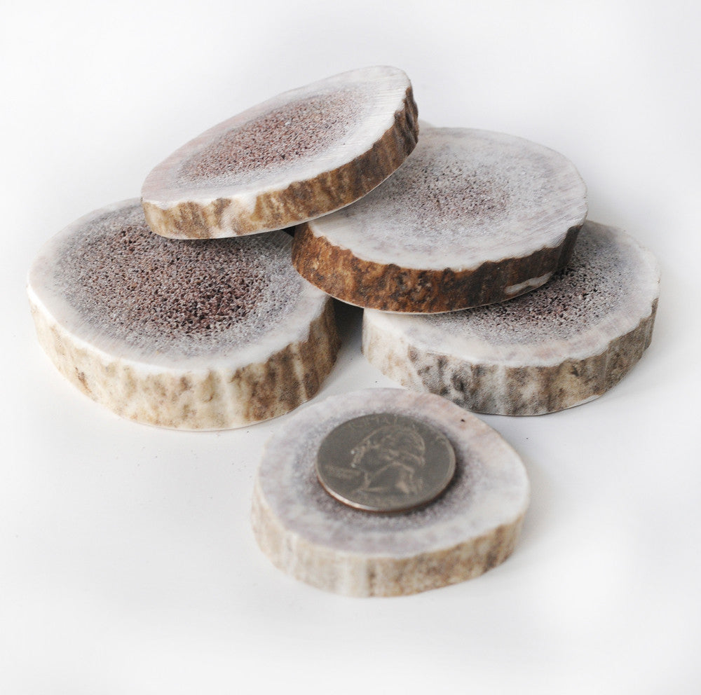 Elk Antler Round Cookie Chews - 4 Pack