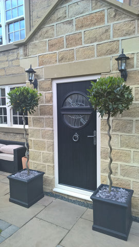 Corkscrew bay tree door planters bentleys for Kitchen 482 kensington