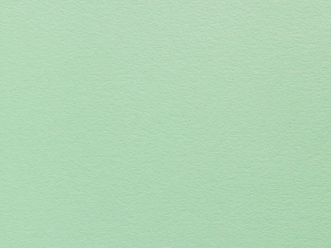 Colorplan Card 175 270 350 gsm Park Green