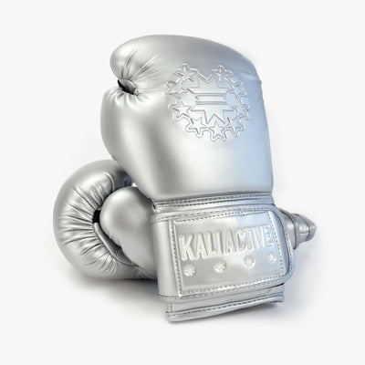 Silver Boxing Glove