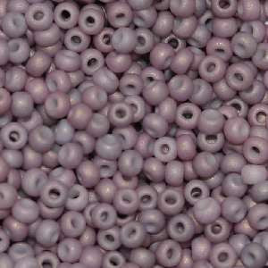11/o Japanese Seed Bead F0463L Frosted - Beads Gone Wild