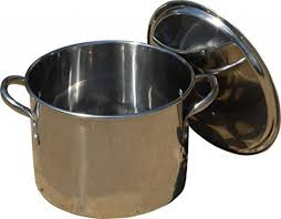 12 qt Stainless Steel Pot