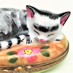 Retired Cat Napping in Garden Limoges Trinket Box - Signed