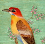 Artifact Puzzles - Bee Eater Wooden Jigsaw Puzzle