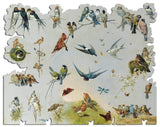 Artifact Puzzles - Giacomelli Birds Wooden Jigsaw Puzzle
