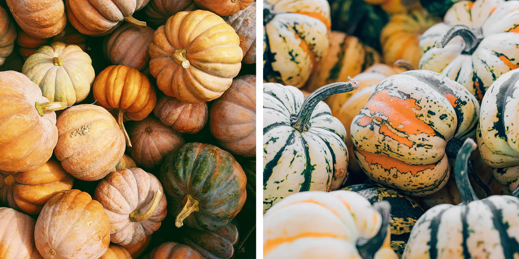 A Guide on Eating During the Fall Season