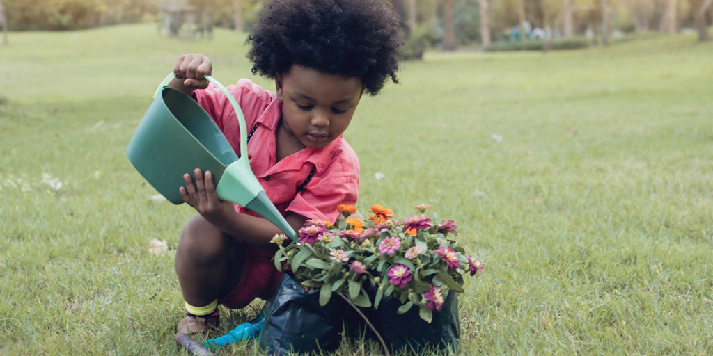 Spring Rituals For Revitalizing Your Life's Pathway