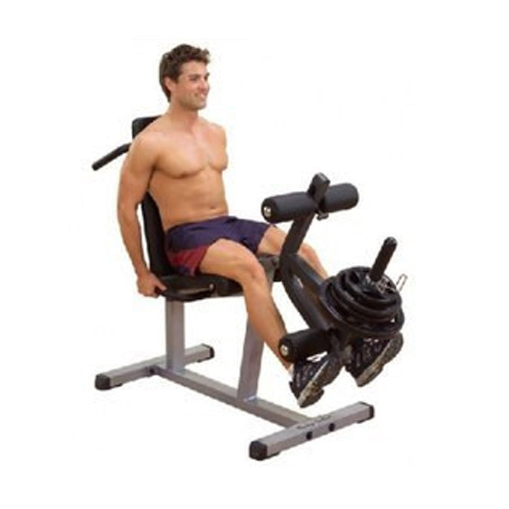 Body-Solid Seated Leg Extension & Supine Curl