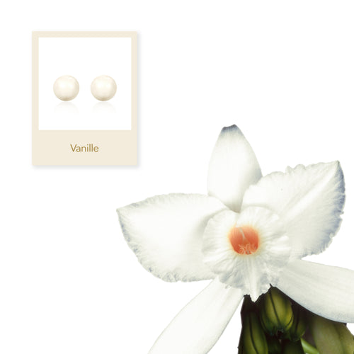 Vanille Pearl Earrings