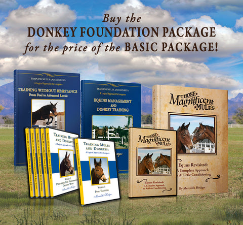 SEPTEMBER SALE! Donkey Foundation Training Package