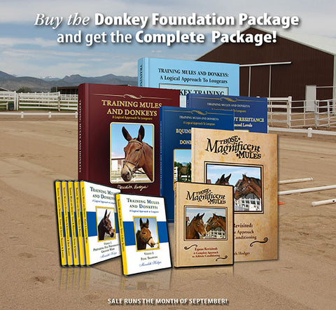 SEPTEMBER SALE! Donkey Complete Training Package for the price of the Foundation Package