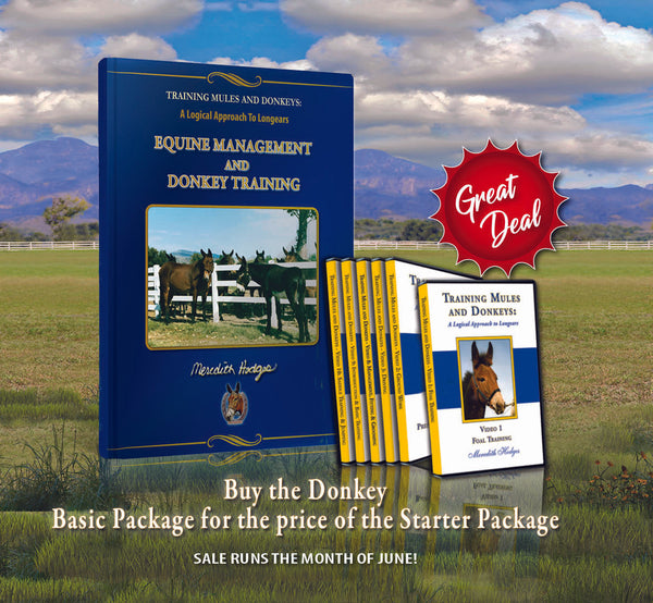 JUNE SALE! Donkey Basic Training Package for the Starter Package Price