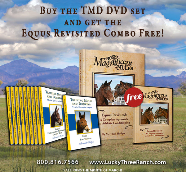 MARCH SALE!! TMD DVD set and Equus Revisited Combo