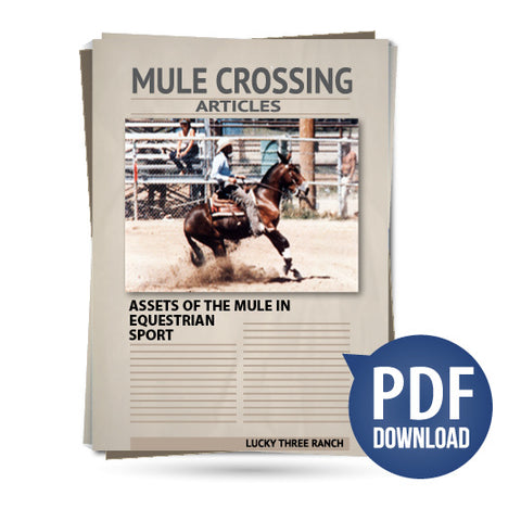 Assets of the Mule in Equestrian Sport
