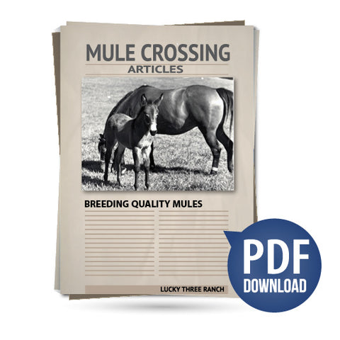 Breeding Quality Mules
