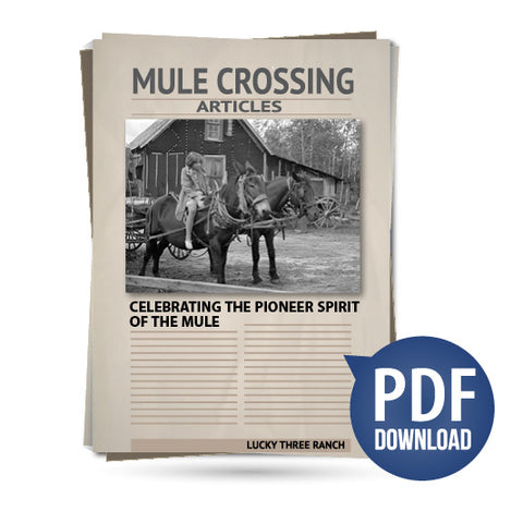 Celebrating the Pioneer Spirit of the Mule