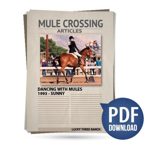 Dancing With Mules 1993 - Sunny