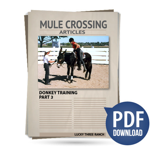 Donkey Training Part 03 - Turns