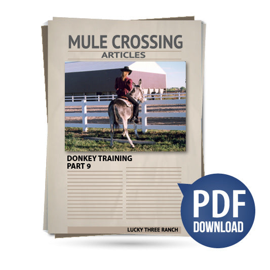 Donkey Training Part 09 - Perfecting Lateral