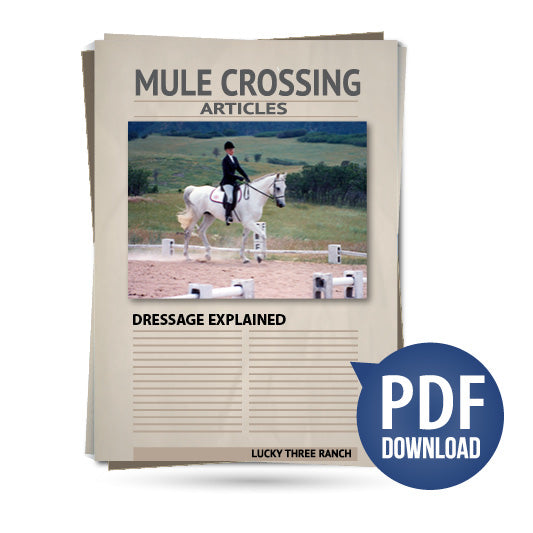 Dressage Explained