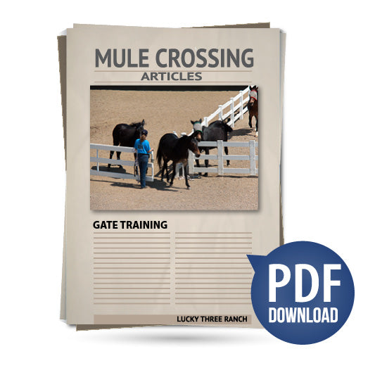 Gate Training
