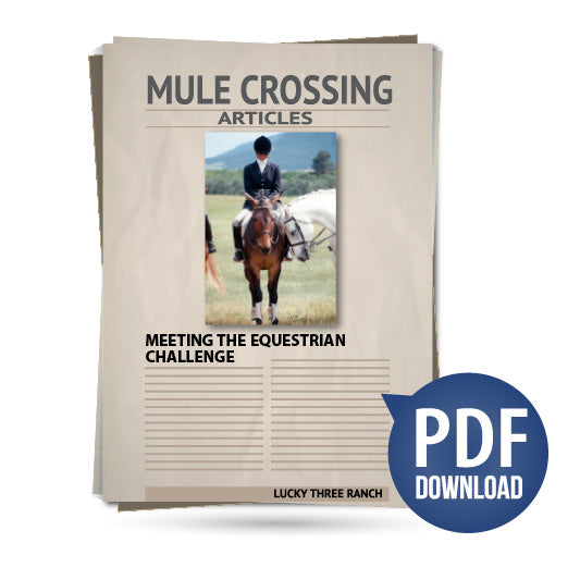 Meeting the Equestrian Challenge