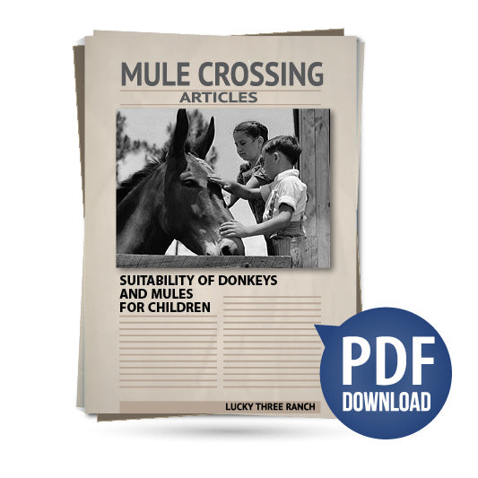 Suitability of Donkeys and Mules for Children